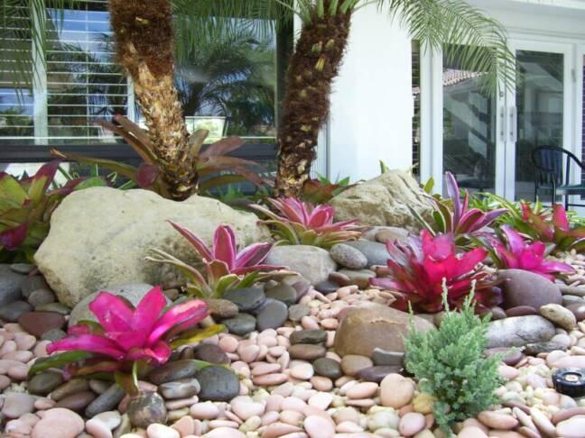 Hawaiian Backyard Fights : tropical view landscape
