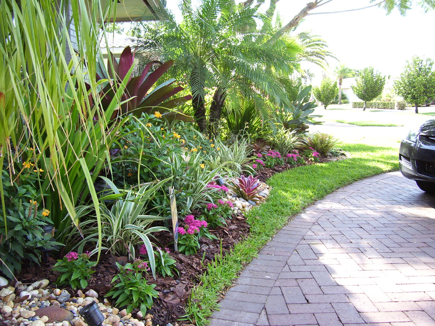 Tropical view landscape for Florida landscape ideas front yard